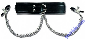 Sportsheets Collar With Nipple Clamps